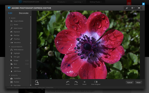 fotomontaggi gratis